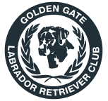 Golden Gate Labrador Retriever Club
